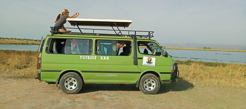 Safari Mini Vans