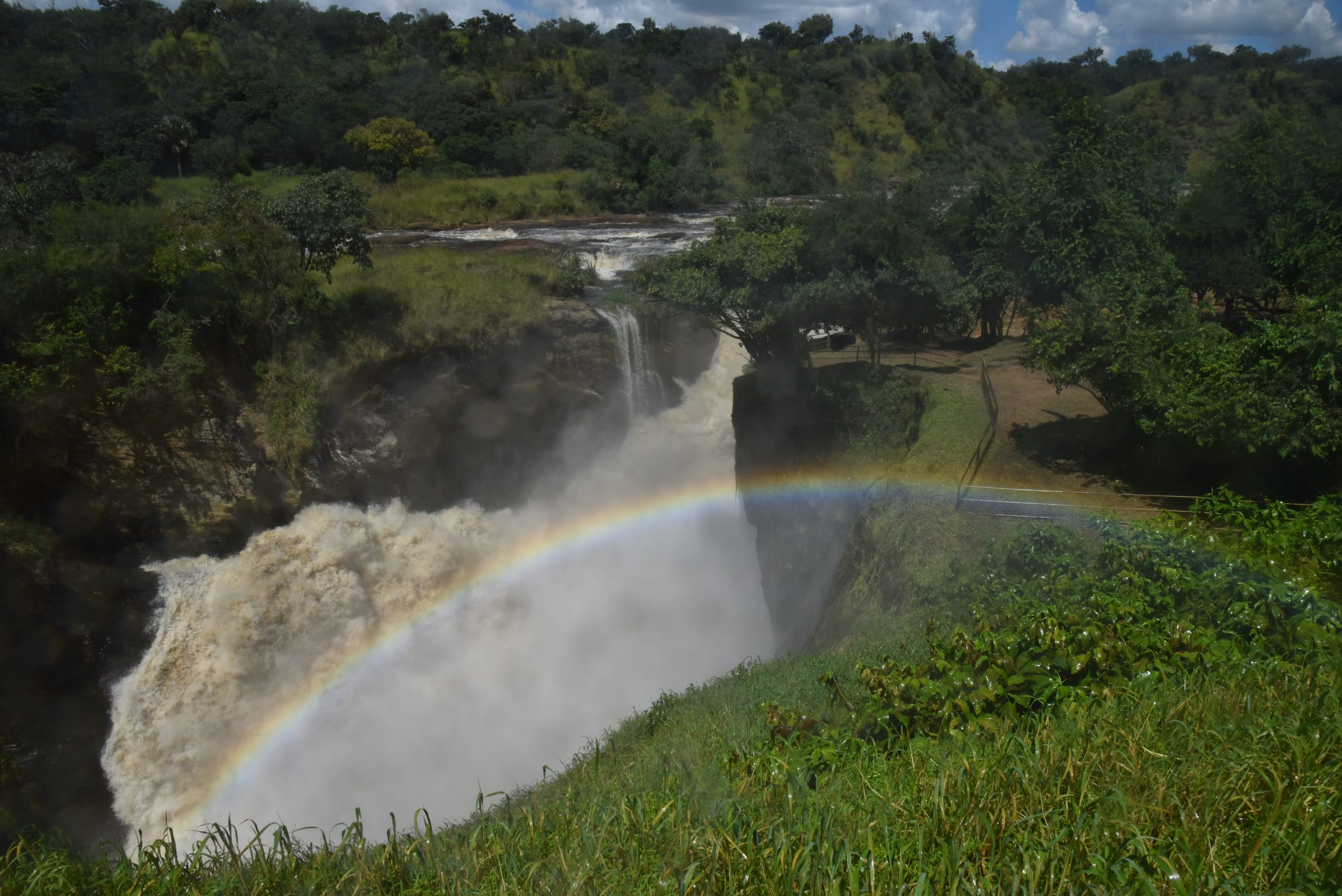 3 Days Murchison Falls safari with boat cruise and chimpanzee tracking tour